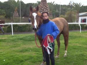 Blu War Horse