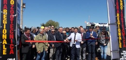 Ha aperto oggi la 1° Fiera regionale Agro Zootecnica di Canicattini, tre giorni di incontri, mostre, enogastronomia