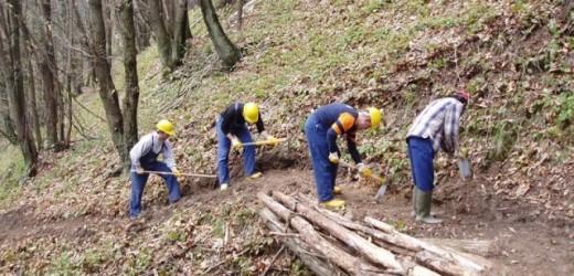 Forestali, dal 10 giugno dovrebbero essere avviati 405 lavoratori più altri 20 per la pulizia del Castello Eurialo