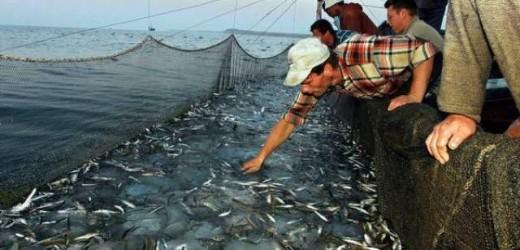 L'emergenza pesca al centro del convegno di sabato a Siracusa di Forza Italia presente il sottosegretario Castiglione