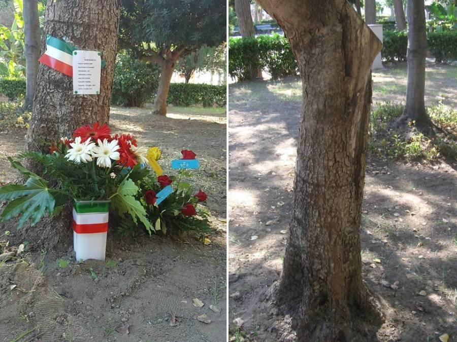 L'albero di Borsellino all'interno di Villa Gorgia a Lentini