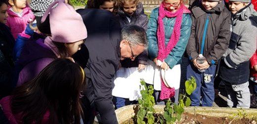 """Festa dell'Albero, gli alunni del plesso """"Mazzini"""" di Canicattini con l'Amministrazione piantumano fiori alla Villa comunale"""