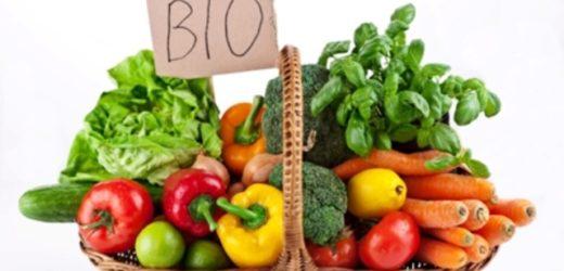 """""""Biologico 2015"""", pubblicato in Sicilia l'elenco definitivo delle aziende ammesse, adesso tocca ad Agea per le erogazioni"""