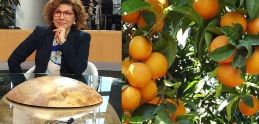L'europarlamentare Michela Giuffrida esorta più controlli fitosanitari alle frontiere per dare forza agli agrumi siciliani