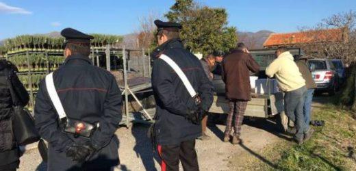 Lotta al caporalato e al lavoro nero da parte dei Carabinieri nelle aree a sud della provincia di Siracusa, sanzioni e denunce