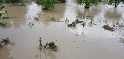 """L'Unione dei Comuni """"Valle degli Iblei"""" chiede alla Regione lo stato di calamità per i danni subiti con le forti piogge"""