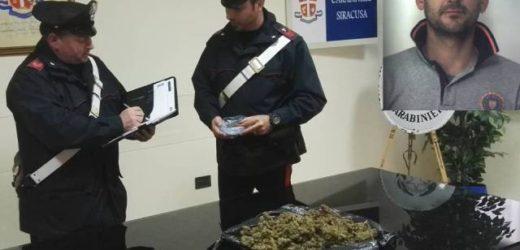 Trovato con quasi un kg di marijuana nascosta in campagna, arrestato un 33enne a Floridia